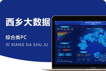 《某市大數據統計》電子商務示范縣大數據系統開發 陜西項目